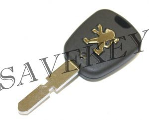 Ключ с чипом + прописка на машину (новый чип)